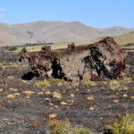 craters moon (10)